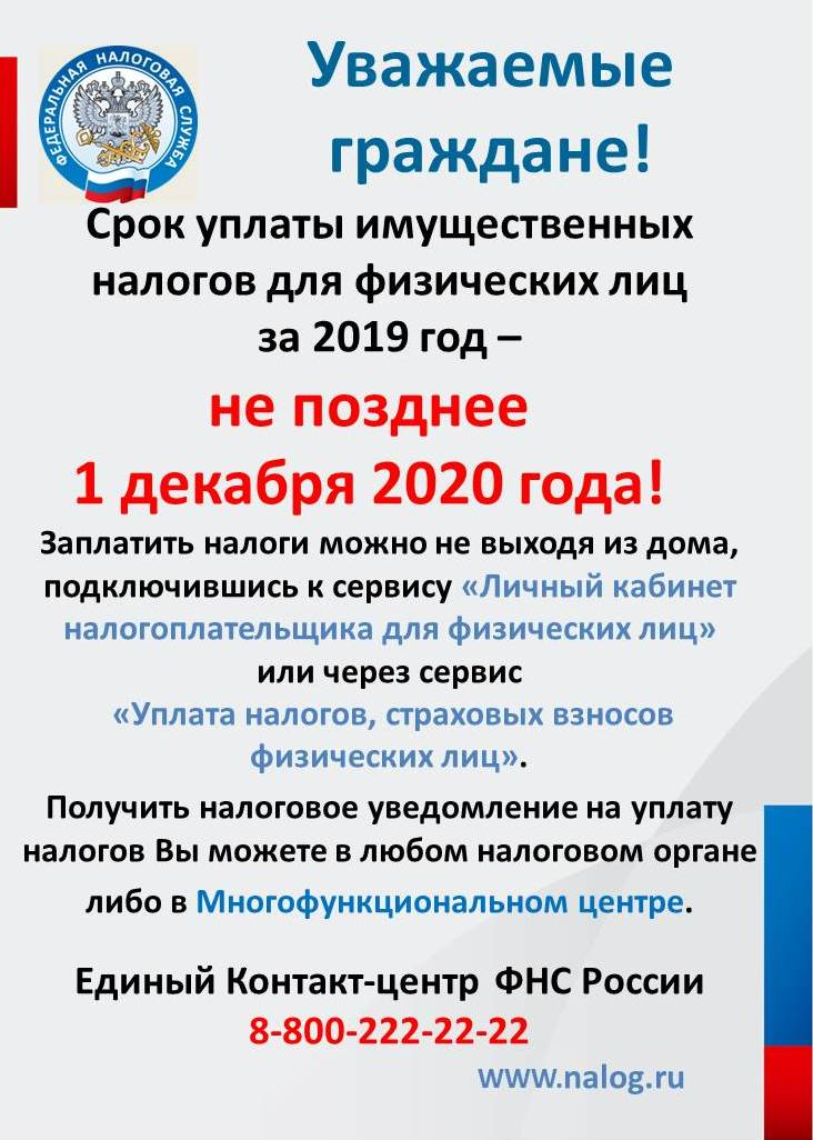 nalog_2020.jpg